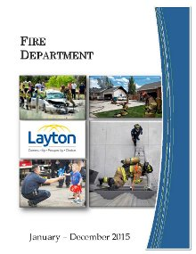 Fire Annual Report 2015