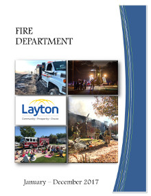 Fire Annual Report 2017