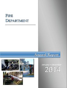 Fire Annual Report 2014